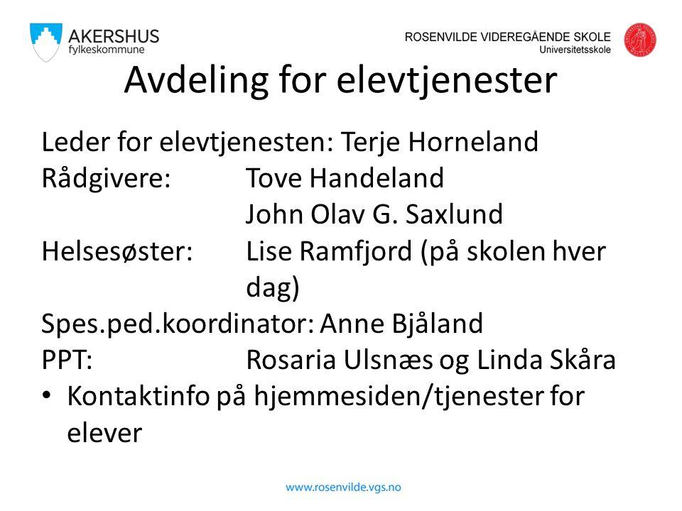 Avdeling for elevtjenester Leder for elevtjenesten: Terje Horneland Rådgivere: Tove Handeland John Olav G. Saxlund Helsesøster: Lise Ramfjord (på skol