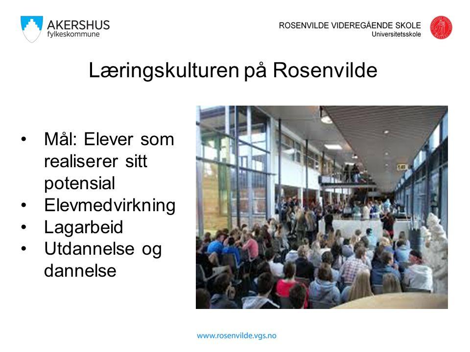 Læringskulturen på Rosenvilde Mål: Elever som realiserer sitt potensial Elevmedvirkning Lagarbeid Utdannelse og dannelse