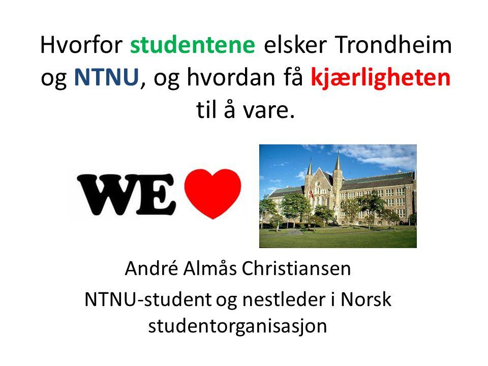 Hvorfor studentene elsker Trondheim og NTNU, og hvordan få kjærligheten til å vare.