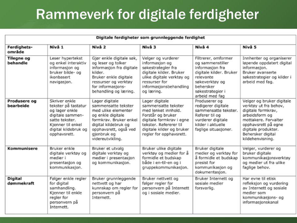 Rammeverk for digitale ferdigheter