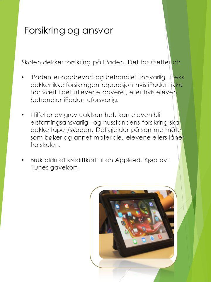 Skolen dekker forsikring på iPaden.