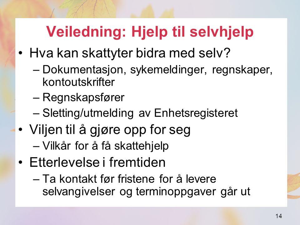 Veiledning: Hjelp til selvhjelp Hva kan skattyter bidra med selv.