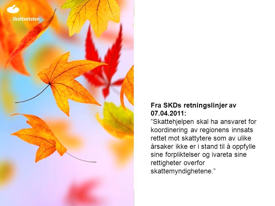 Fra SKDs retningslinjer av 07.04.2011: Skattehjelpen skal ha ansvaret for koordinering av regionens innsats rettet mot skattytere som av ulike årsaker ikke er i stand til å oppfylle sine forpliktelser og ivareta sine rettigheter overfor skattemyndighetene.