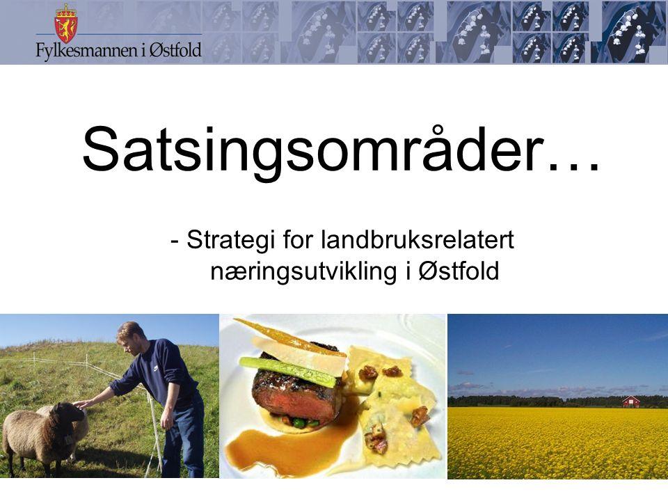 Satsingsområder… - Strategi for landbruksrelatert næringsutvikling i Østfold