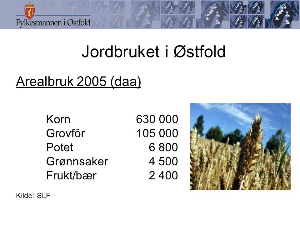 Jordbruket i Østfold Arealbruk 2005 (daa) Korn630 000 Grovfôr105 000 Potet 6 800 Grønnsaker 4 500 Frukt/bær 2 400 Kilde: SLF