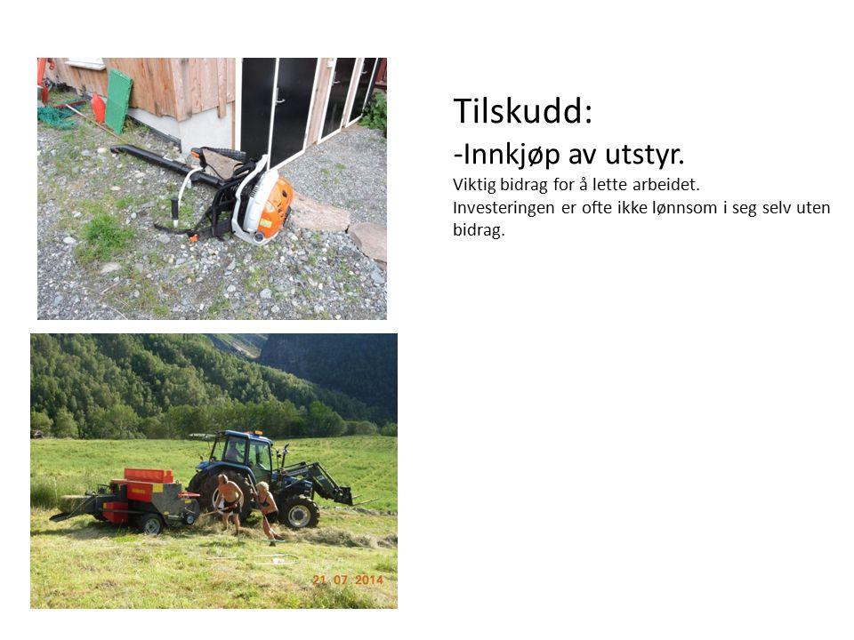 Tilskudd: - Innkjøp av utstyr. Viktig bidrag for å lette arbeidet.