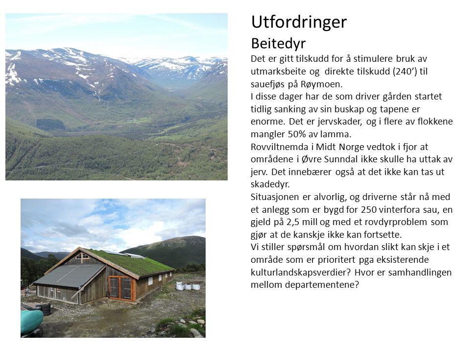 Utfordringer Beitedyr Det er gitt tilskudd for å stimulere bruk av utmarksbeite og direkte tilskudd (240') til sauefjøs på Røymoen.