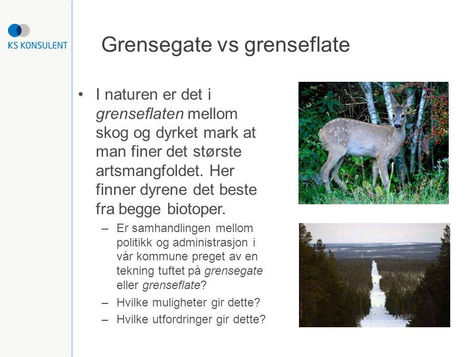 Grensegate vs grenseflate I naturen er det i grenseflaten mellom skog og dyrket mark at man finer det største artsmangfoldet.
