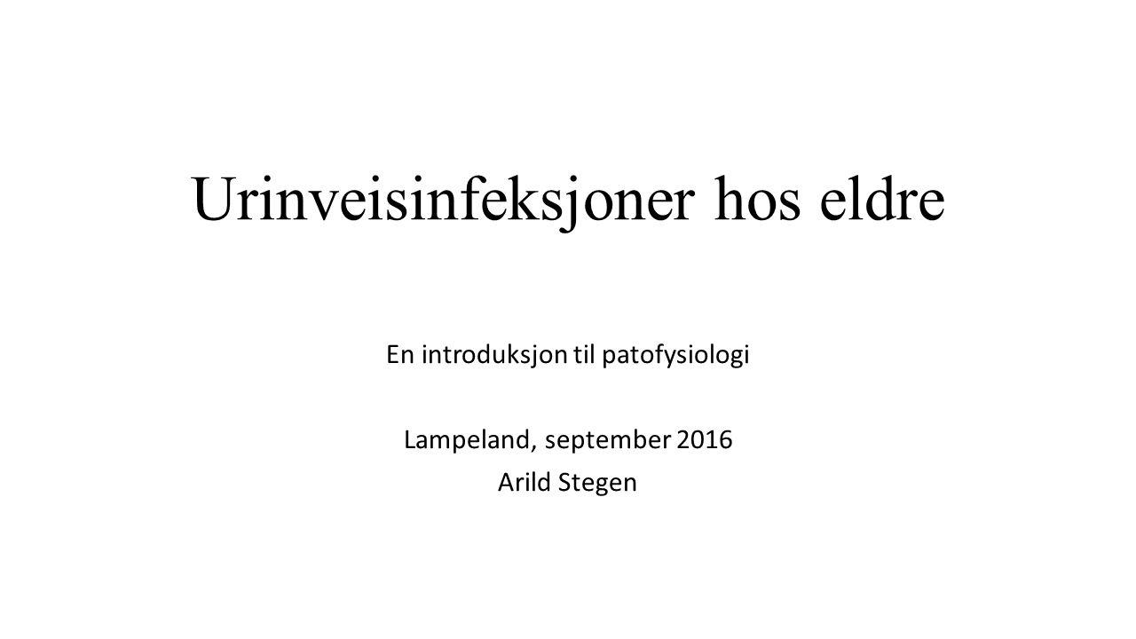 Urinveisinfeksjoner hos eldre En introduksjon til patofysiologi Lampeland, september 2016 Arild Stegen