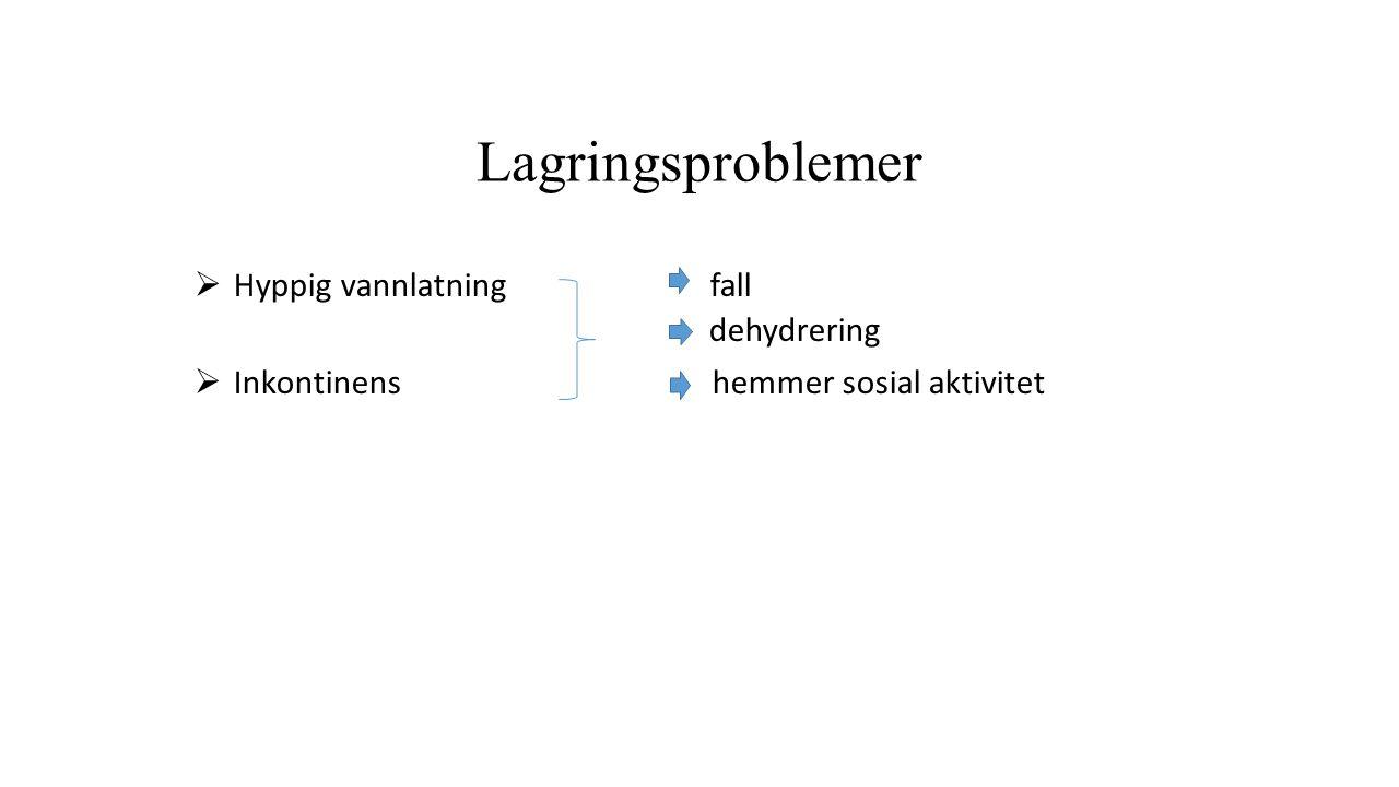 Lagringsproblemer  Hyppig vannlatning fall dehydrering  Inkontinens hemmer sosial aktivitet