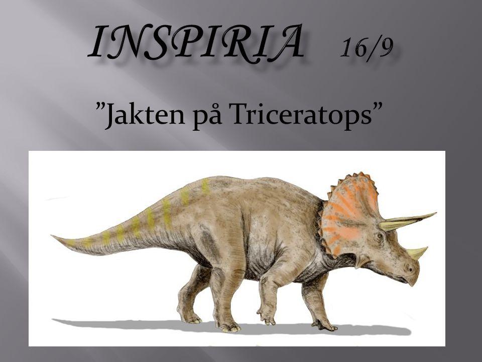 Jakten på Triceratops