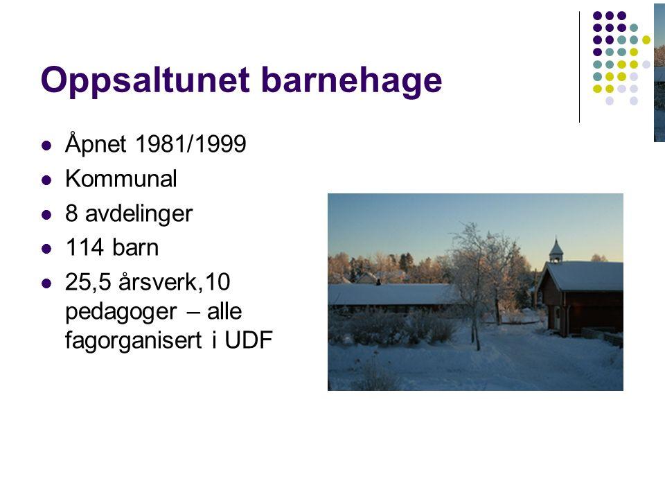 Oppsaltunet barnehage Åpnet 1981/1999 Kommunal 8 avdelinger 114 barn 25,5 årsverk,10 pedagoger – alle fagorganisert i UDF