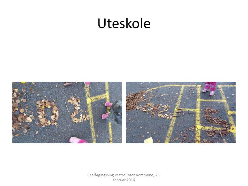 Uteskole Realfagsatsning Vestre Toten Kommune, 25. februar 2016