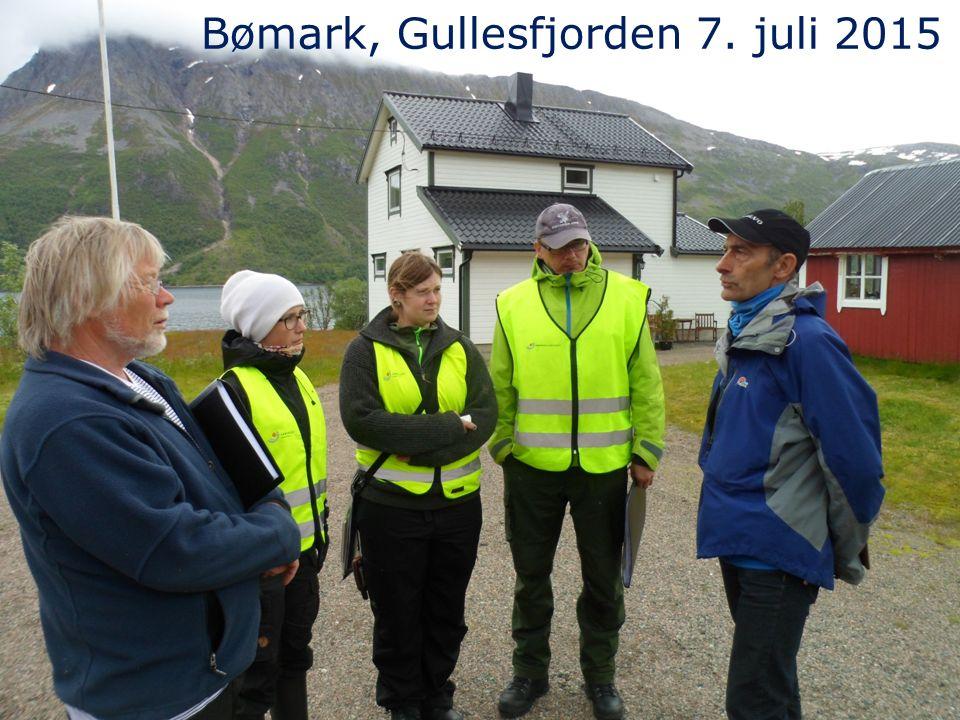 Bømark, Gullesfjorden 7. juli 2015