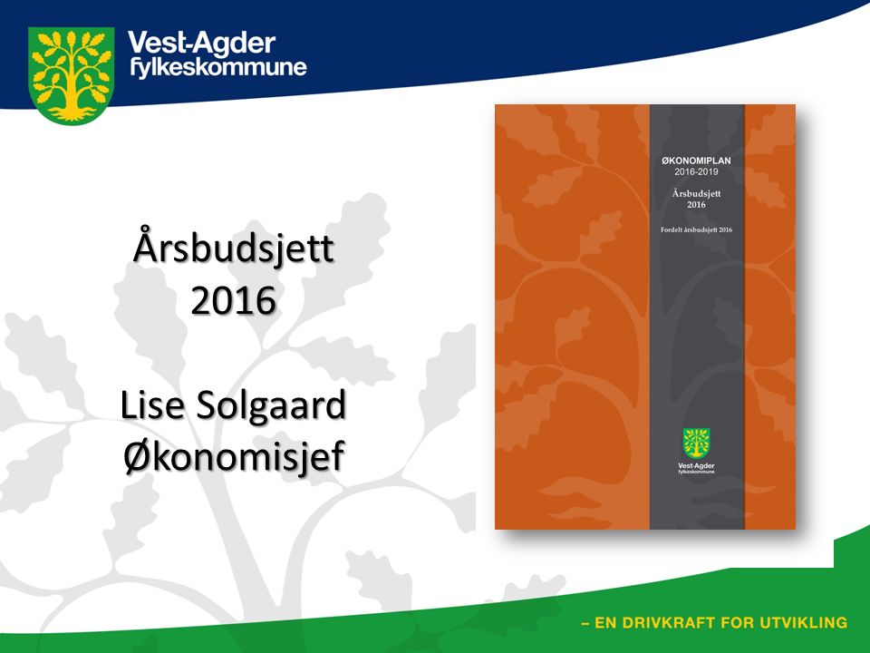 Årsbudsjett2016 Lise Solgaard Økonomisjef