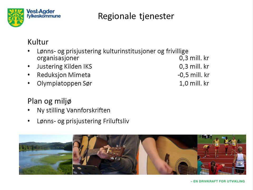 Regionale tjenester Kultur Lønns- og prisjustering kulturinstitusjoner og frivillige organisasjoner0,3 mill.