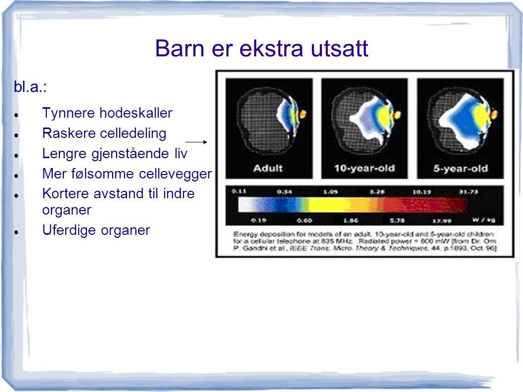 Barn er ekstra utsatt bl.a.: Tynnere hodeskaller Raskere celledeling Lengre gjenstående liv Mer følsomme cellevegger Kortere avstand til indre organer Uferdige organer