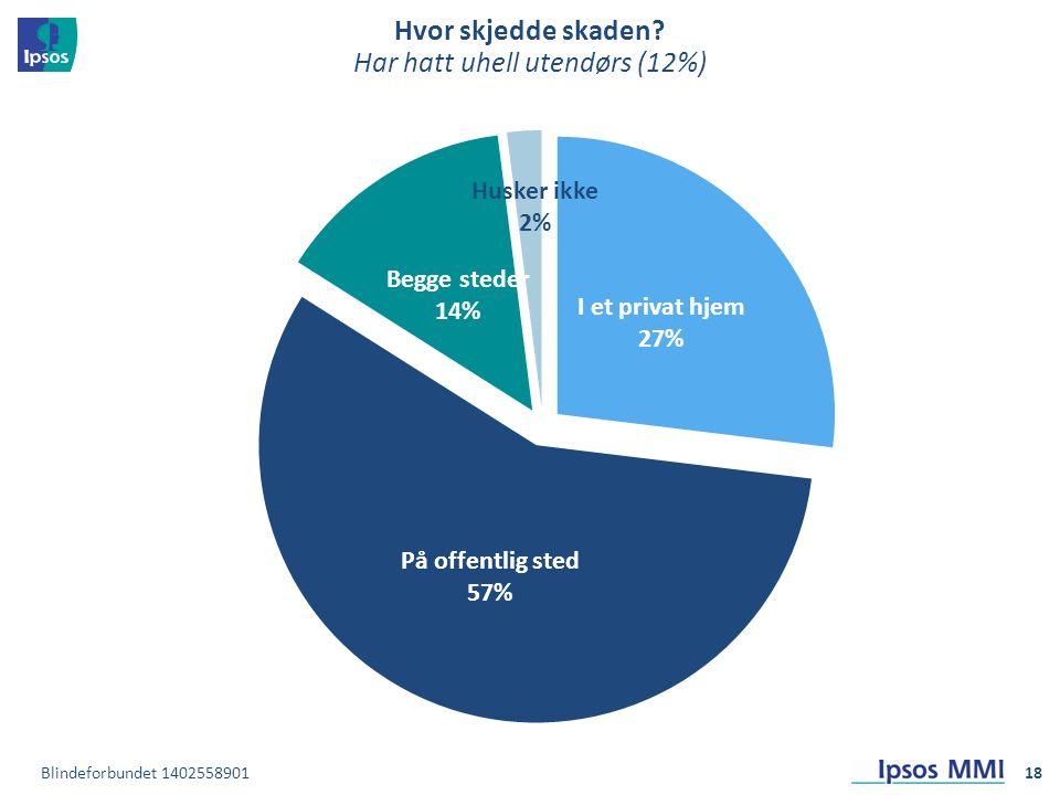 Hvor skjedde skaden Har hatt uhell utendørs (12%) 18Blindeforbundet 1402558901