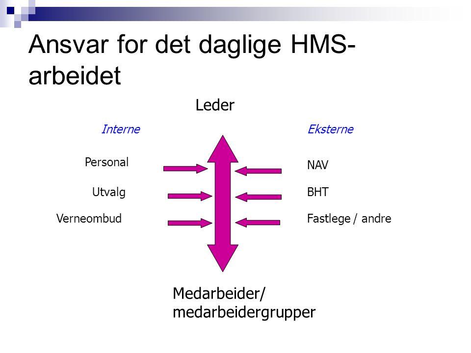 Oppgave Toppledelsen: Hvilke styringssignaler og tiltak må iverksettes for en vellykket implementering av HMS- systemet.