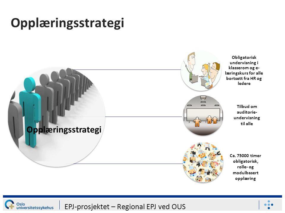 Opplæringsstrategi Obligatorisk undervisning i klasserom og e- læringskurs for alle bortsett fra HR og ledere Opplæringsstrategi Tilbud om auditorie- undervisning til alle Ca.