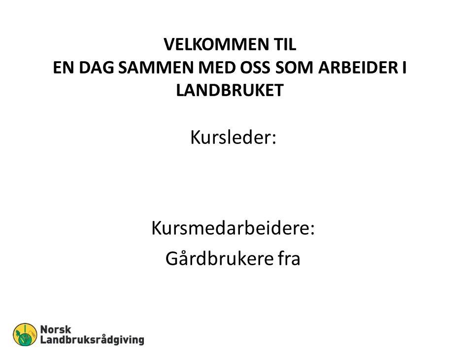 TEMA I DAG: «TRYGG PÅ JOBB» MED LANDBRUKETSOM EKSEMPEL Bøndene har Norges farligste arbeidsplass.
