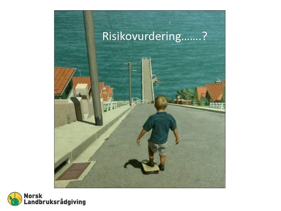 Risikovurdering…….