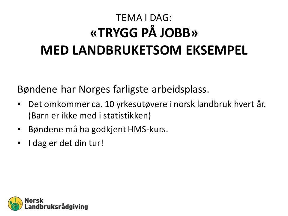 TEMA I DAG: «TRYGG PÅ JOBB» MED LANDBRUKETSOM EKSEMPEL Bøndene har Norges farligste arbeidsplass. Det omkommer ca. 10 yrkesutøvere i norsk landbruk hv