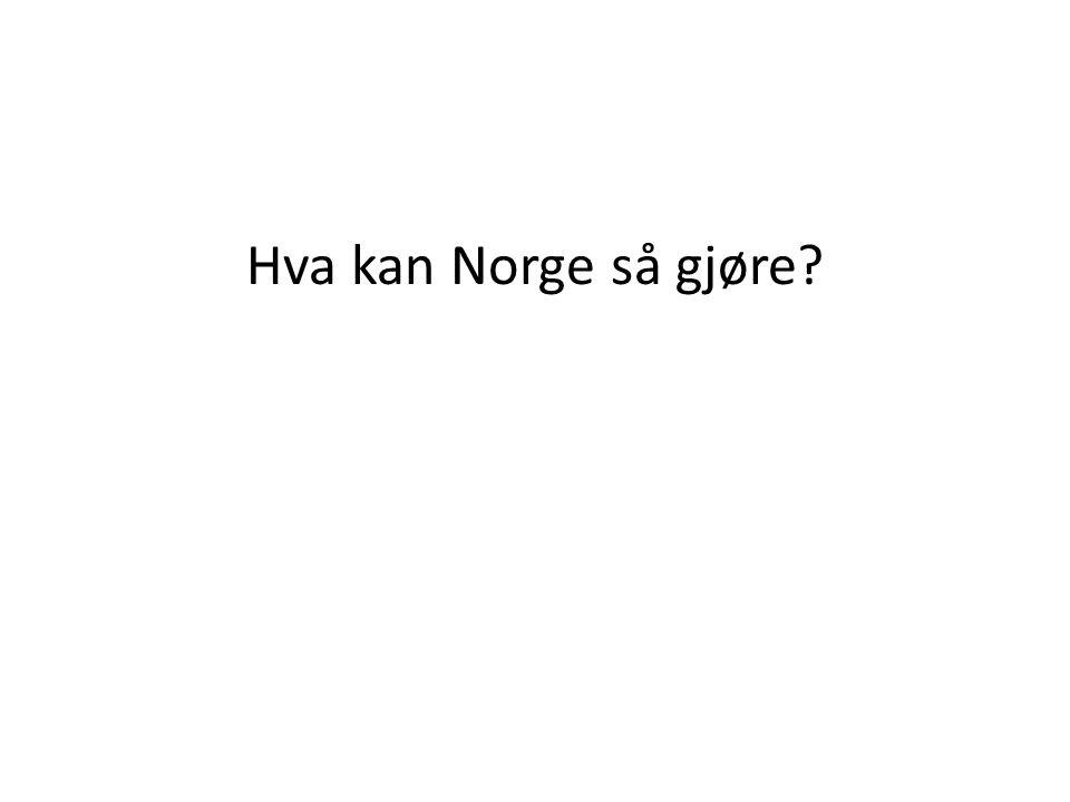 Hva kan Norge så gjøre?