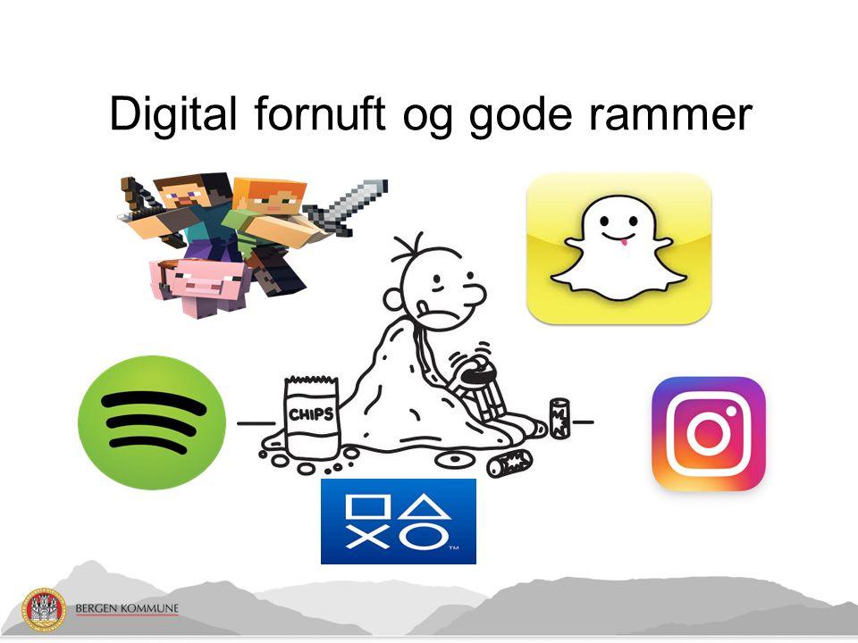 Digital fornuft og gode rammer