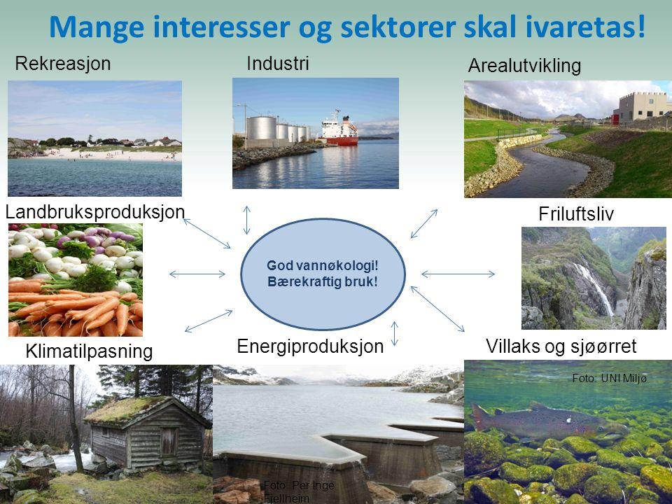Mange interesser og sektorer skal ivaretas! God vannøkologi! Bærekraftig bruk! Landbruksproduksjon EnergiproduksjonVillaks og sjøørret Arealutvikling