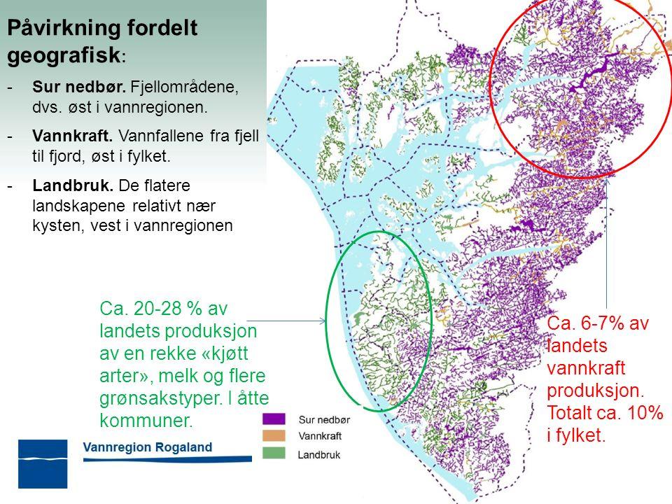 Jæren vannområde - aktivitet Felles overvåkingsprogram Prosjekt Håelva: kartlegging av arealer langs elva, bunndyrundersøkelser, tiltaksplan m.m.