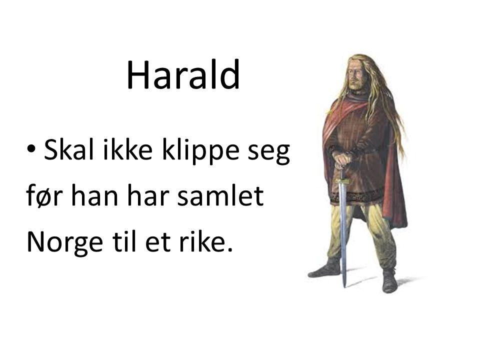 Harald Skal ikke klippe seg før han har samlet Norge til et rike.