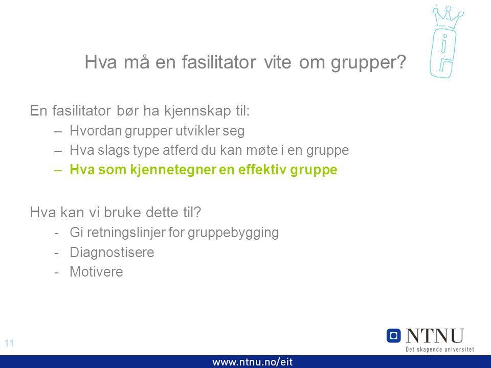 11 EiT 2006/2007 Hva må en fasilitator vite om grupper.