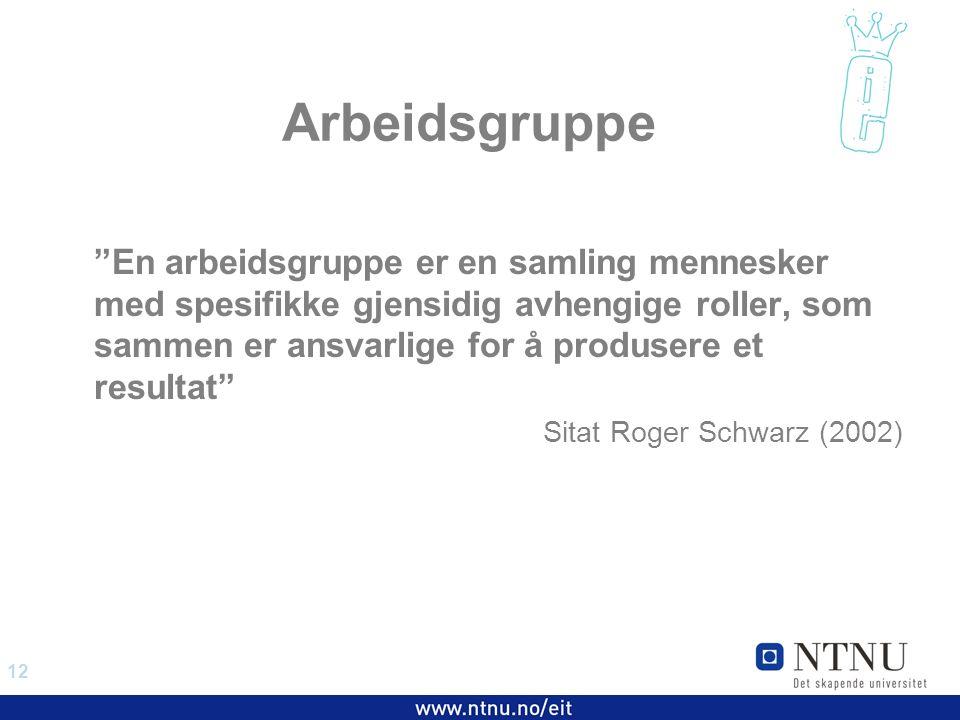 12 EiT 2006/2007 Arbeidsgruppe En arbeidsgruppe er en samling mennesker med spesifikke gjensidig avhengige roller, som sammen er ansvarlige for å produsere et resultat Sitat Roger Schwarz (2002)
