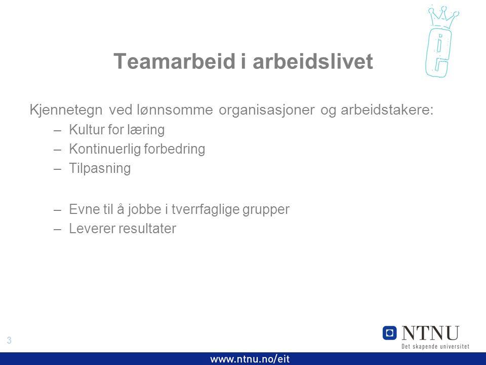 3 EiT 2006/2007 Teamarbeid i arbeidslivet Kjennetegn ved lønnsomme organisasjoner og arbeidstakere: –Kultur for læring –Kontinuerlig forbedring –Tilpasning –Evne til å jobbe i tverrfaglige grupper –Leverer resultater
