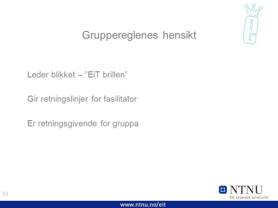 30 EiT 2006/2007 Gruppereglenes hensikt Leder blikket – EiT brillen Gir retningslinjer for fasilitator Er retningsgivende for gruppa