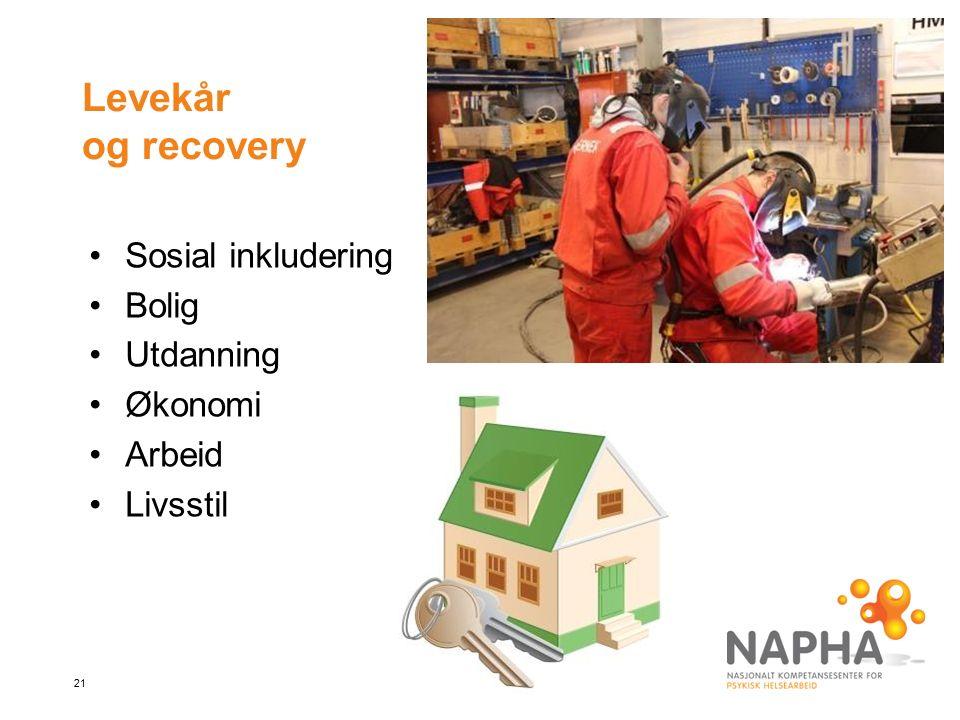 21 Levekår og recovery Sosial inkludering Bolig Utdanning Økonomi Arbeid Livsstil