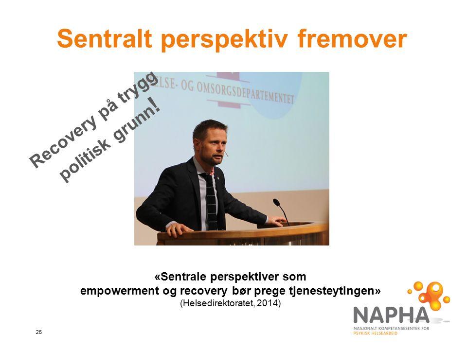 25 Sentralt perspektiv fremover Recovery på trygg politisk grunn .