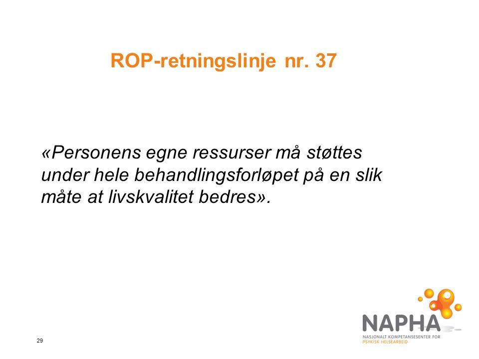 29 ROP-retningslinje nr.