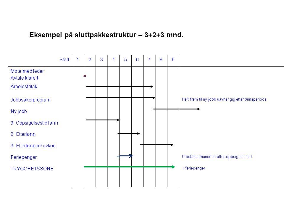 Eksempel på sluttpakkestruktur – 3+2+3 mnd.