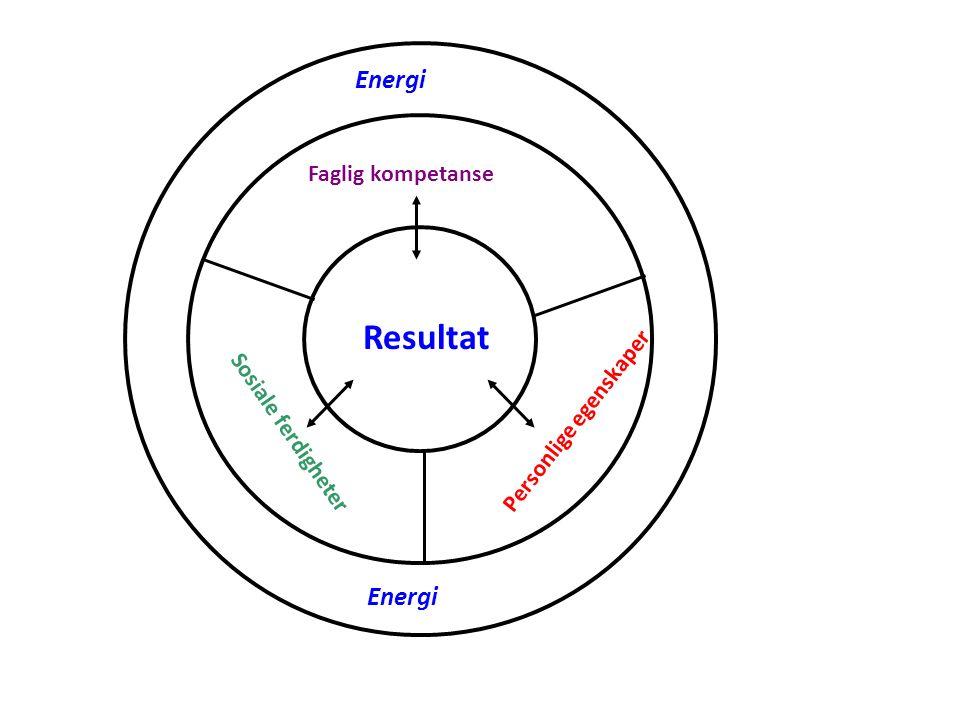 Resultat Faglig kompetanse Sosiale ferdigheter Personlige egenskaper Energi
