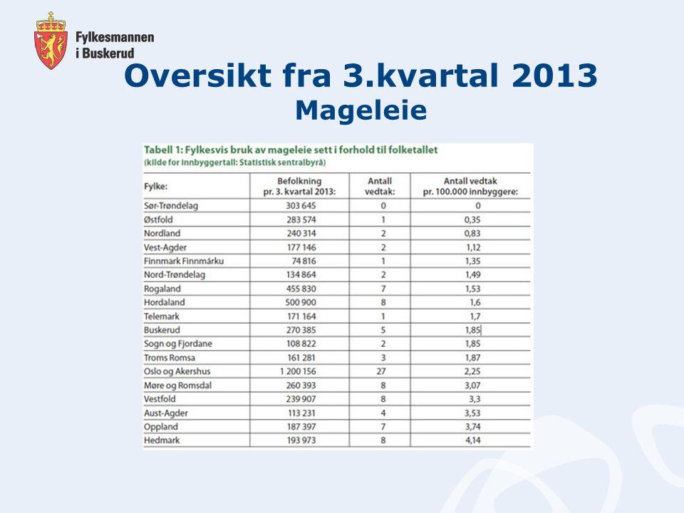Oversikt fra 3.kvartal 2013 Mageleie