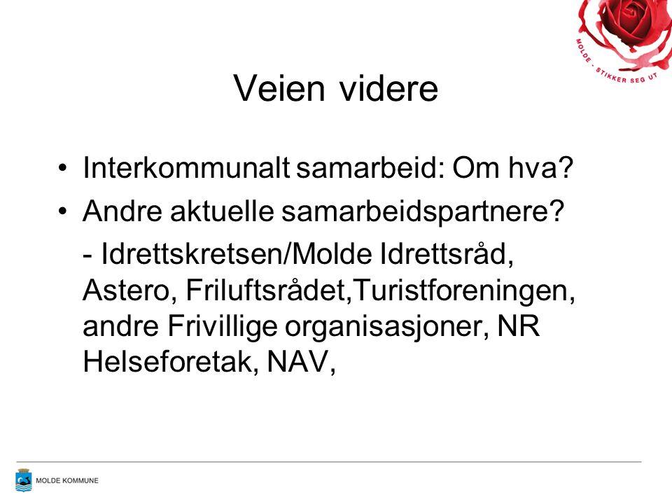 Veien videre Interkommunalt samarbeid: Om hva. Andre aktuelle samarbeidspartnere.