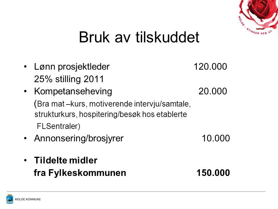 Bruk av tilskuddet Lønn prosjektleder 120.000 25% stilling 2011 Kompetanseheving 20.000 ( Bra mat –kurs, motiverende intervju/samtale, strukturkurs, hospitering/besøk hos etablerte FLSentraler) Annonsering/brosjyrer 10.000 Tildelte midler fra Fylkeskommunen 150.000