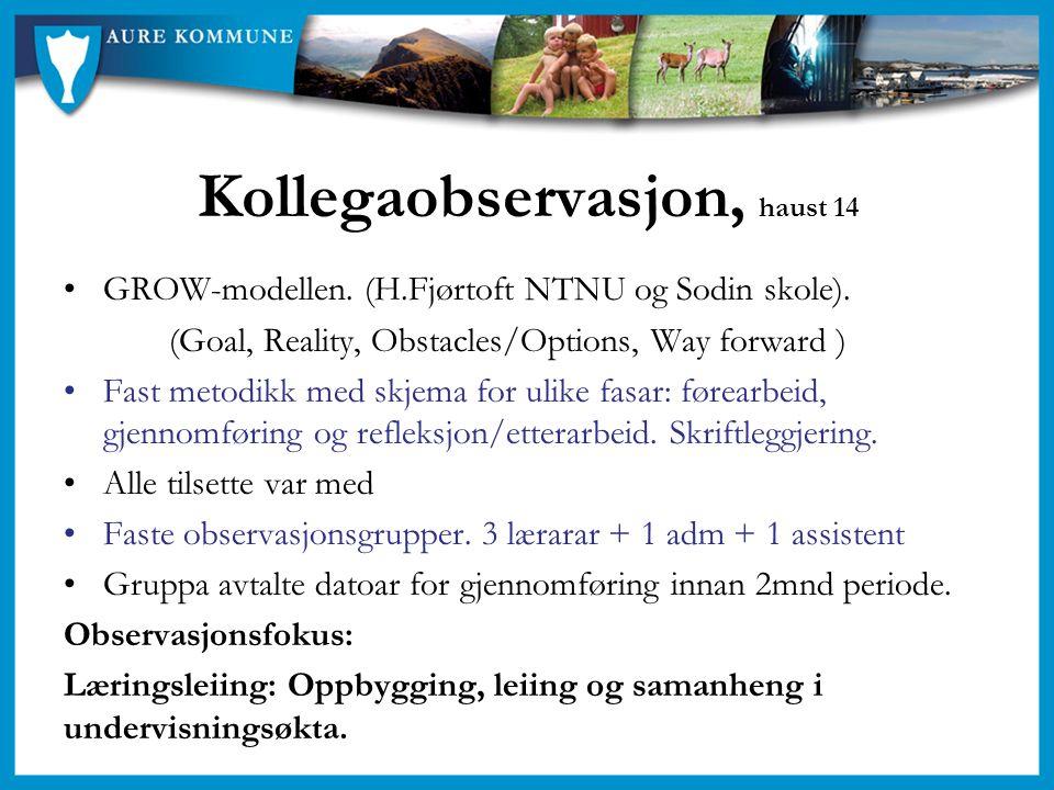 Kollegaobservasjon, haust 14 GROW-modellen. (H.Fjørtoft NTNU og Sodin skole). (Goal, Reality, Obstacles/Options, Way forward ) Fast metodikk med skjem