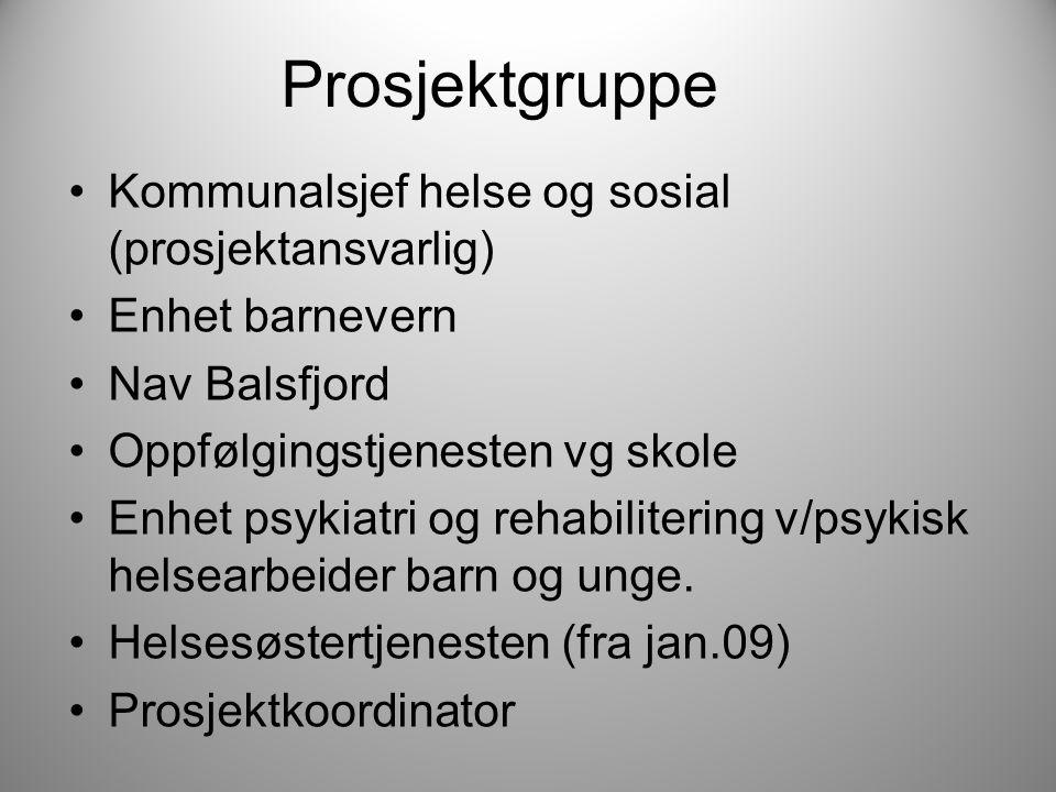 Prosjektgruppe Kommunalsjef helse og sosial (prosjektansvarlig) Enhet barnevern Nav Balsfjord Oppfølgingstjenesten vg skole Enhet psykiatri og rehabilitering v/psykisk helsearbeider barn og unge.