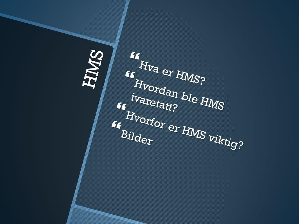 HMS  Hva er HMS  Hvordan ble HMS ivaretatt  Hvorfor er HMS viktig  Bilder