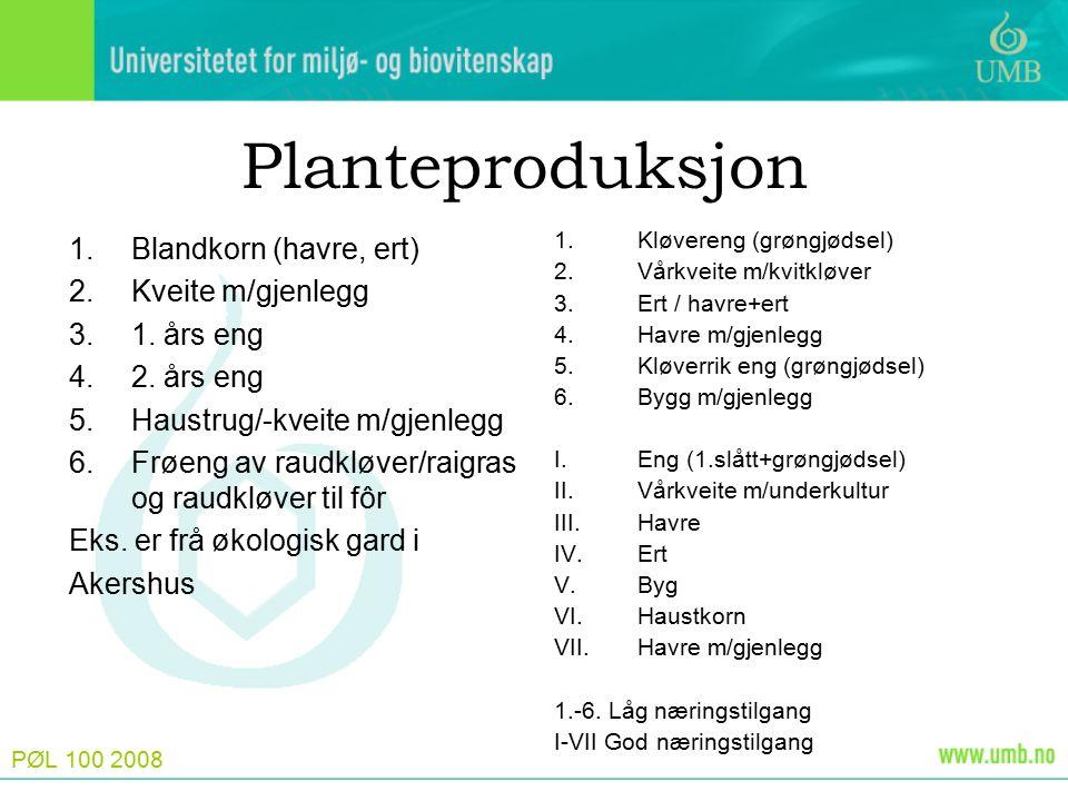 PØL 100 2008 Planteproduksjon 1.Blandkorn (havre, ert) 2.Kveite m/gjenlegg 3.1. års eng 4.2. års eng 5.Haustrug/-kveite m/gjenlegg 6.Frøeng av raudklø