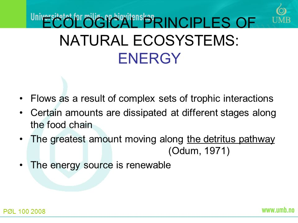 PØL 100 2008 ECOLOGICAL PRINCIPLES OF NATURAL ECOSYSTEMS: ENERGY Flows as a result of complex sets of trophic interactions Certain amounts are dissipa