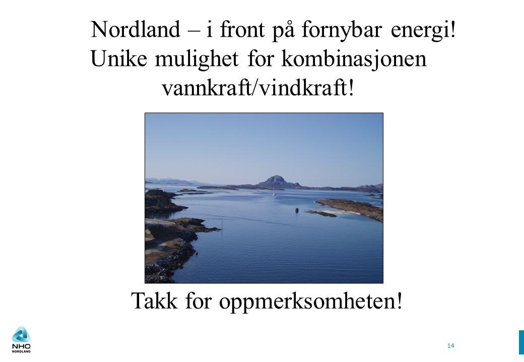 14 Takk for oppmerksomheten. Nordland – i front på fornybar energi.